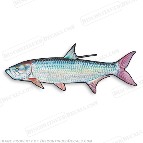 Tarpon Decal - 9""